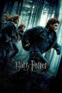 Harry Potter 7: and the Deathly Hallows: Part 1 (2010) แฮร์รี่ พอตเตอร์ 7: กับเครื่องรางยมทูต ภาค 1